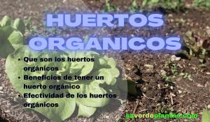 huertos orgánicos
